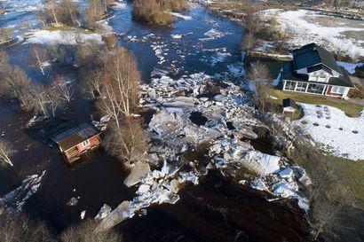 Pyhäjoen tulva Kielosaaren kohdalla