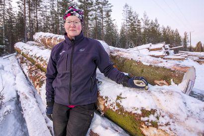 Metsänomistajille on suunnitteilla ensimmäinen valtiontuki täysin ja ainoastaan ilmastolähtökohdista – kompensaatioiden taustalla hiilinielujen vahvistaminen
