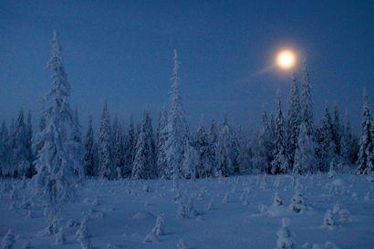 Kevojärvellä mitattiin talven toistaiseksi kylmimmät lukemat: -35,4