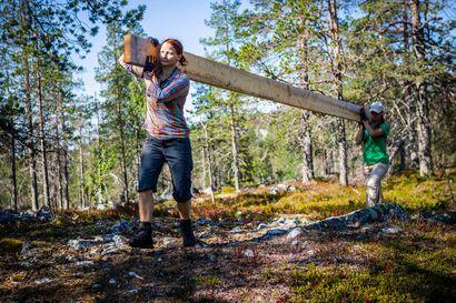 Rakkaudesta retkeilyyn – Suomen Rangereiden talkooleirillä kunnostettiin Savukosken Kivitunturin luontopolkuja