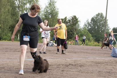 Mätsärit saivat koiraihmiset liikkeelle – Best in Shown voitto meni Kannukseen