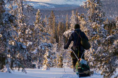 Vuosi erämaassa – Erno Saukko vaelsi vuoden aikana 2 500 kilometriä pohjoisen erämaissa kokeakseen pohjoisen luonnon koko vuodenkierron