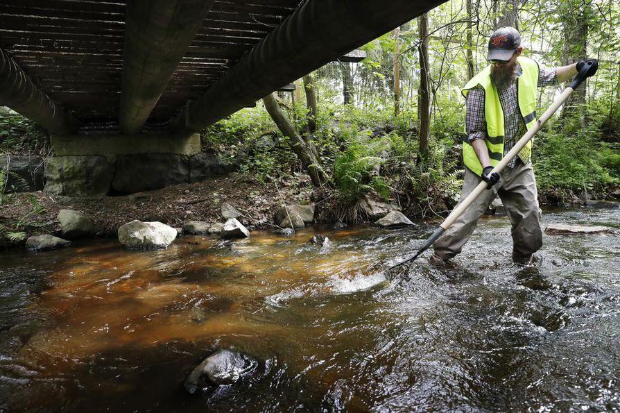 Tänä kesänä puroihin on rakennettu muun muassa kutusorakoita.