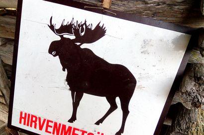 Oulun alueelle reilut 5000 hirven pyyntilupaa