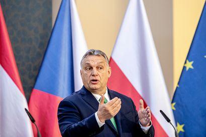 Haukut, joista voi ylpeillä – Unkarin Pohjoismaille antamat nuhteet ovat nolot korkeintaan antajalleen