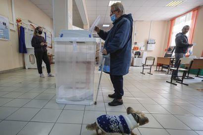 Venäläiset äänestivät itselleen kuvernöörejä ja paikallispoliitikkoja – Navalnyin kampanjoima taktinen äänestäminen oli vahvasti esillä