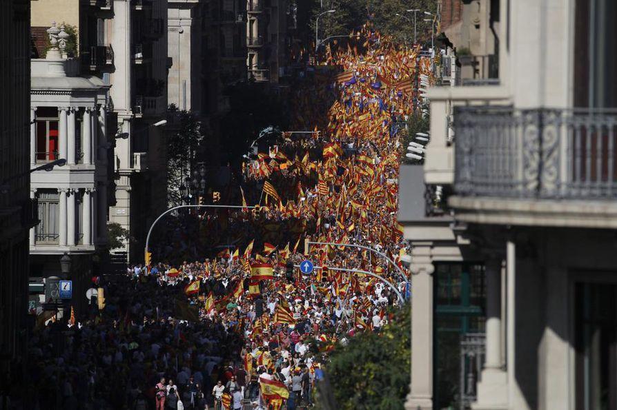 Mielenosoitukseen kerrotaan kerääntyneen kymmeniätuhansia ihmisiä.