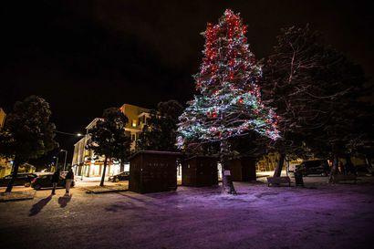 Katso, kenen joulupuu on tämän joulun kaunein