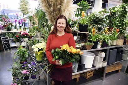 Kemiläinen kukkakauppa kasvaa ja uudistuu taukoamatta