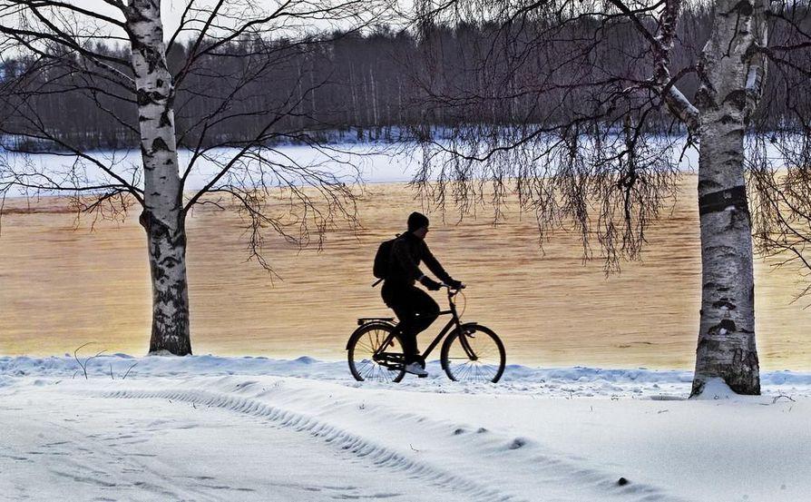 Oulussa talvipyöräily on voimissaan. Arkistokuva.