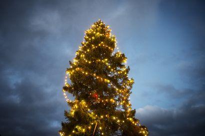 Kielillä puhumista, klemmaripaljastuksia, heijastinhanskoja ja illantappajia – Näin julkisuuden henkilöt kertovat joulunviettonsa sujumisesta
