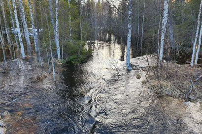 Tulvavedet virtaavat Pohjois-Suomessa lukijoiden kuvissa - lähetä kuvia tulvista