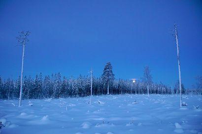 Pakkanen paukkuu – Pudasjärven pakkasennätys tältä talvelta -32,9 astetta