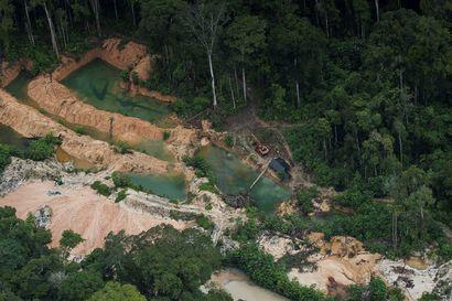 Amazonin sademetsän hävitys jatkuu voimakkaana – viimeksi metsää tuhoutui enemmän 12 vuotta sitten