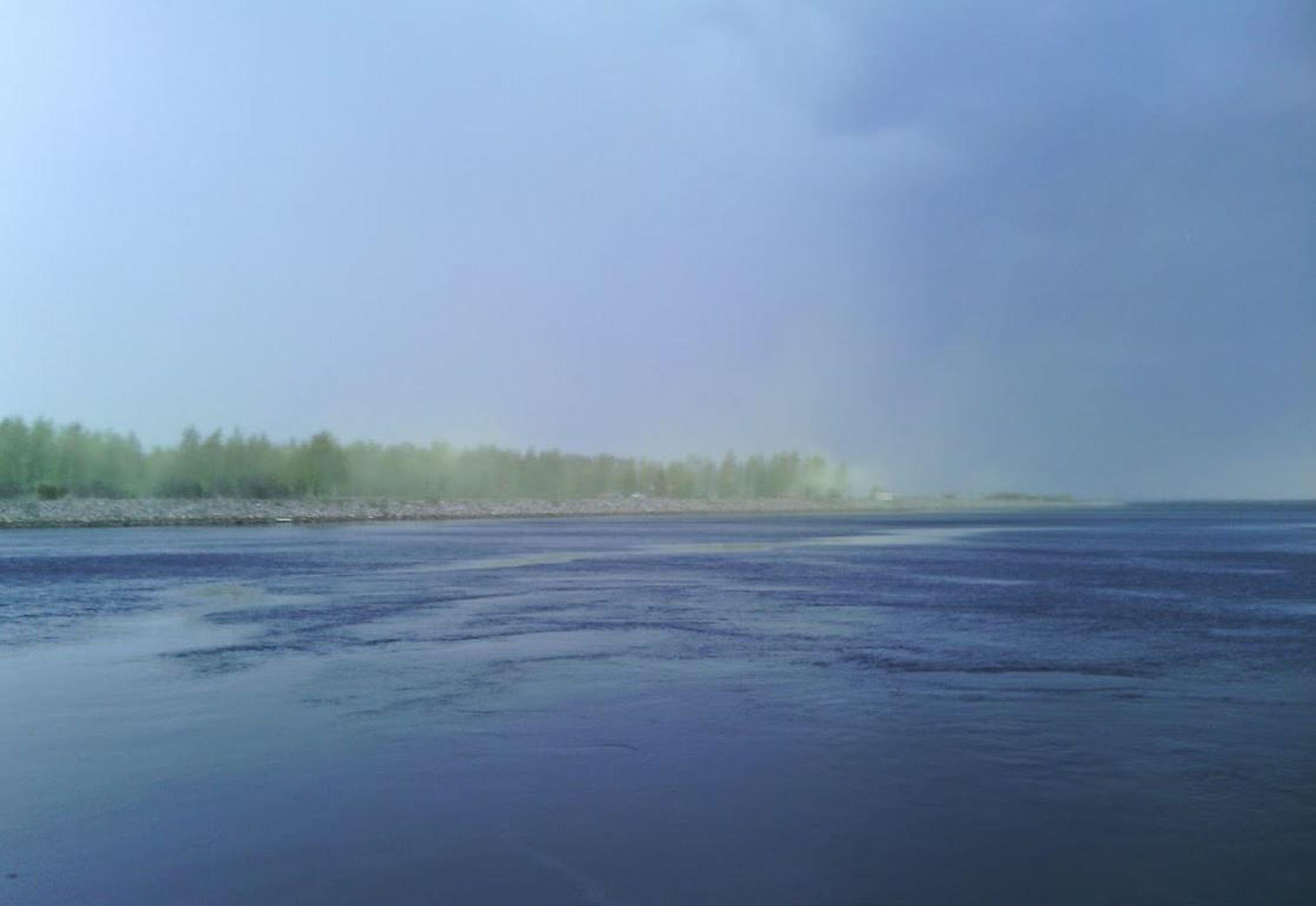 Siitepöly Oulu
