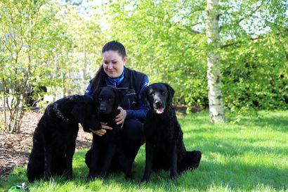 Rakkaus koiriin innoitti opiskelemaan toisen ammatin – farmaseutti valmistuu eläintenhoitajaksi Ruukin maaseutuopistosta