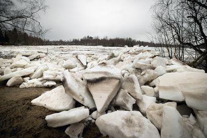 Kiiminkijoella seurataan nyt tarkasti jääpatoja, jotka voivat nostaa tulvaveden nopeasti ja arvaamattomasti