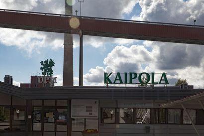 """Puheenvuoro: """"Metsäteollisuuden kilpailukyky on avainroolissa, kun EU viimeistelee ilmastolakia"""" – Suomen ja Ruotsin metsäteollisuuden järjestöjohtajat toivovat hallituksilta toimia"""