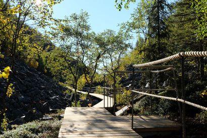 Isokurun läpi kulkeva kesäretkeilyreitti Pyhä-Luoston kansallispuistossa aukeaa kaksi vuotta kestäneiden kunnostustöiden jälkeen – rakentamiseen kului 17 kilometriä puutavaraa