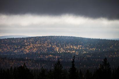 Pallas-Yllästunturin kansallispuisto uusi eurooppalaisen ympäristösertifikaattinsa – Suomessa vain Syötteen kansallispuistolla on sama tunnus