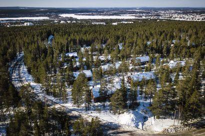 Rovaniemen kaupunki ostaa kaikki yksityisten maat Ounasvaaralta, jos omistajat haluavat myydä – Puuta ei hakata, mutta kokonaan ei suojellakaan