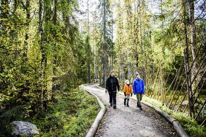 """Retkeilyn suosio on saanut myös lapsiperheet vaeltamaan – """"Aikuiset haluavat pehmeitä seikkailuja"""", sanoo matkailututkija"""
