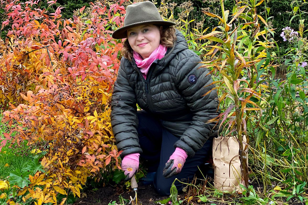"""Liisa Virta istutti tuhat kukkasipulia kotipihalleen – """"Itsekin vähän kauhistelin määrää"""""""