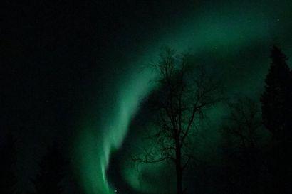 Lukijan kuva: Revontulet ovat tulleet jo taivaalle