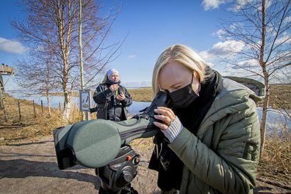Tuplalimosa liiteli sisäministerin kiikareihin – suomalaisia Maria Ohisalo ei vielä innosta lentämään, vaan kannustaa tänäkin kesänä matkustamaan kotimaassa