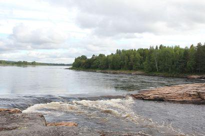 Keskisuomalainen kalastaja löytyi kuolleena Kattilakoskelta