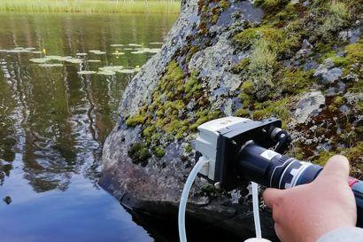 Helikopteri tuo kalojen kutusoraa Livojokeen – joen yläosan kunnostusurakka alkaa Posiolla torstaina