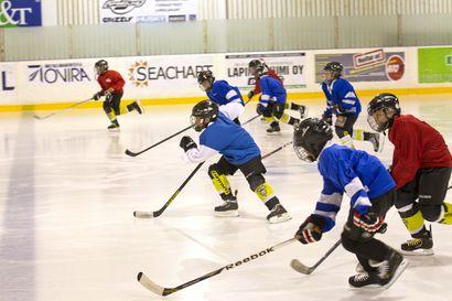 Jääkiekkojunioreille 989 500 euroa tukea jääkiekkoharrastuksen kustannuksiin