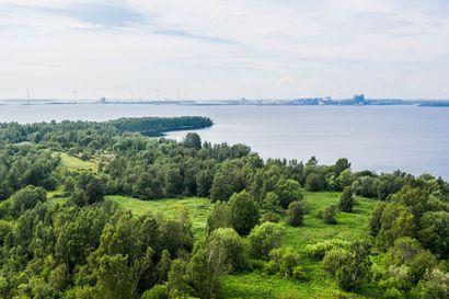 Autioitunut Kuusiluodon saari kätkee sisäänsä raunioita ja muistoja menneiltä ajoilta – tuhannen ihmisen sahayhdyskunta katosi saksalaisten sotilaiden tieltä