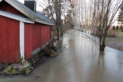 Tämä on uusi normaali – joulukuussa vesistöihin voi taas tulla vuoden pahin fosforipiikki