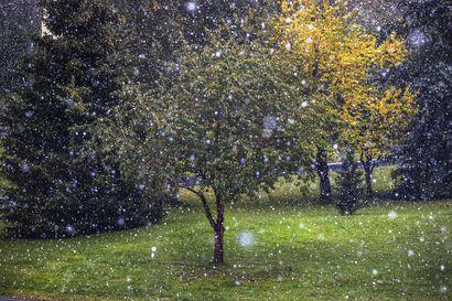 Alkuviikko oli harvinaisen lämmin – syyskuu on Oulussa silti jäämässä pitkästä aikaa keskimääräistä viileämmäksi