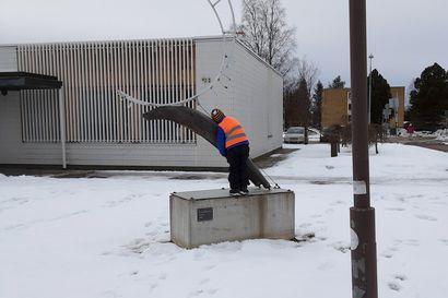 Osallistu Lasten Rovaniemi -kilpaan! – Uusi Rovaniemi kutsuu alle kouluikäisiä valokuvaamaan kotikaupunkiaan
