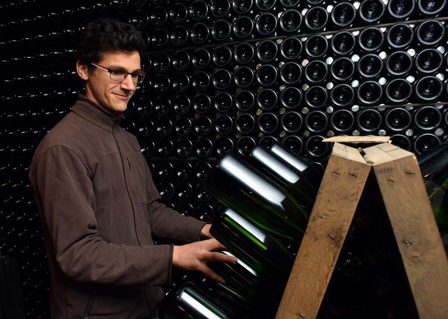 Champagne Jean Velutin nuori isäntä Benoit Velut, 30, tanssittaa käsin samppanjapulloja. Tämä on tärkeä vaihe. Pulloihin muodostunut sakka valutetaan joko käsin tai mekaanisesti kaulaosaan. Tanssitus käsin kestää noin kuusi viikkoa, mekaaninen viikon.