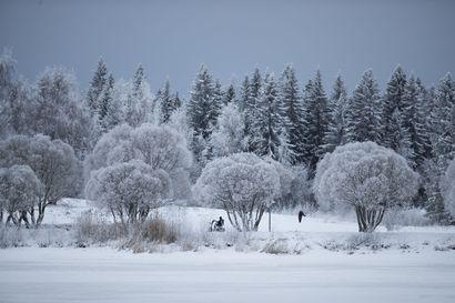 Helmikuu oli tavanomaista kylmempi, mutta se päättyi lauhana