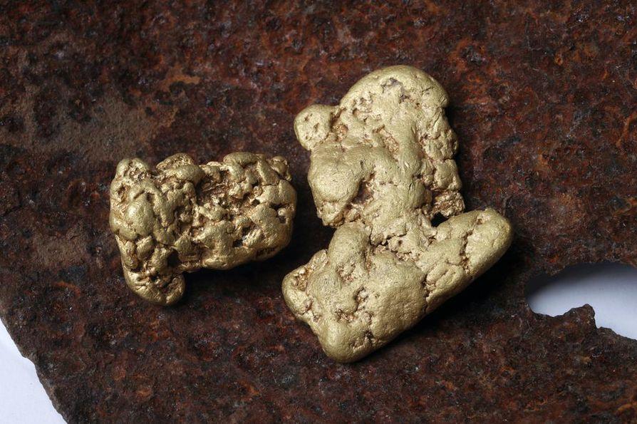 Hiput löytyivät Laanilan kultareitin maastoista. Isompi hipuista painaa 36 grammaa ja pienempi 24 grammaa.