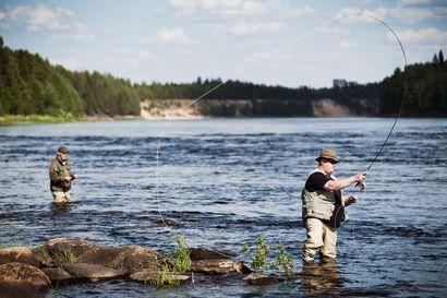 Lukijalta: Ministerin ryhdyttävä vaelluskalatekoihin